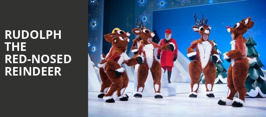 Christmas Shows Raleigh 2019 Best Holiday & Christmas Shows in Raleigh 2019/20: Tickets, Info